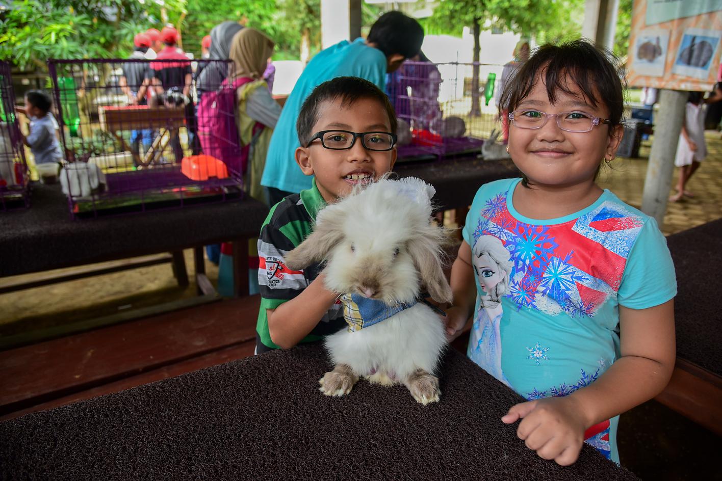 PEDULI HEWAN: Di Bunny Friend Village Taman Botani Sukorambi, pengunjung bisa mengenal berbagai hal tentang kelinci dan landak mini.